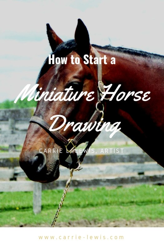 How to Start a Miniature Horse Drawing