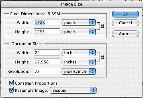 How to Process Digital Reference Photos in Photoshop Step 2a