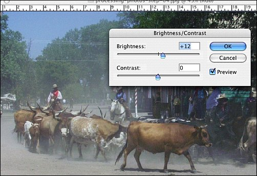 How to Process Digital Reference Photos in Photoshop Step 5b