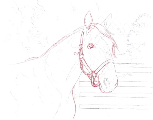 How to Draw a Horse Using a Grid Step 8