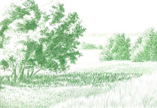 Green Landscape 1