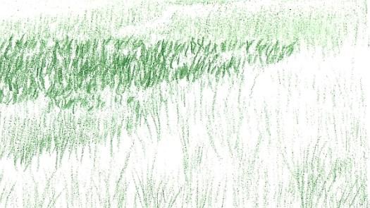 Green Landscape 2
