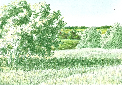 Colored Pencil Landscape with Far and Middle Distance Completed