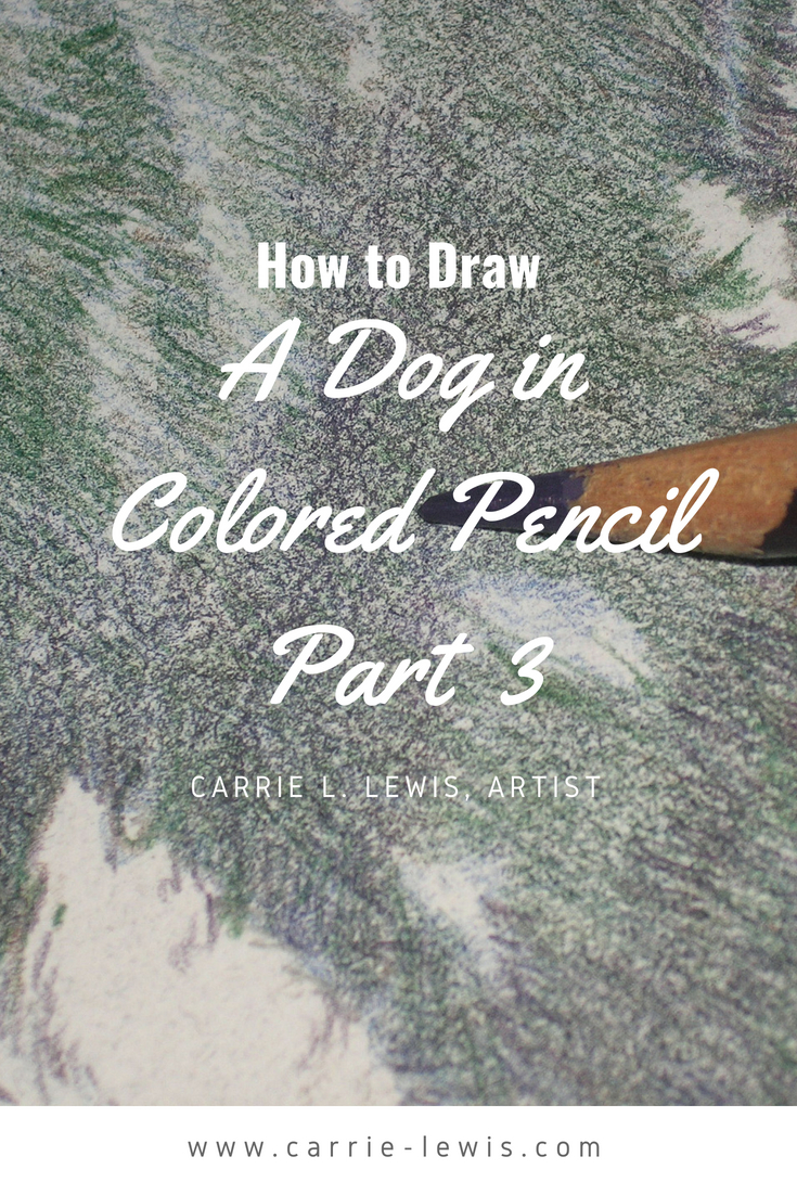 How to Draw a Dog in Colored Pencils Part 3