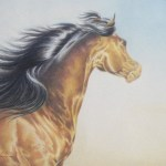 Art Instruction - Online Colored Pencil Courses
