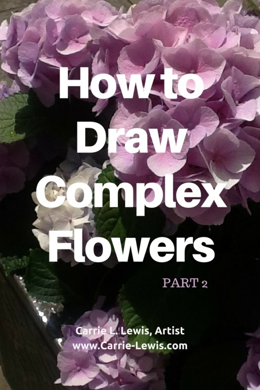 How to Draw Complex Flowers Part 2
