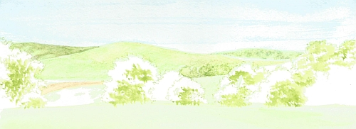 Water Soluble Under Drawing for a Landscape Step 08