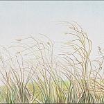 8 Drawing Mini Clinics - How to Draw Autumn Grass