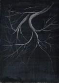 2017 Plein Air Drawings - 2017-11-23 Tree In the Street Light