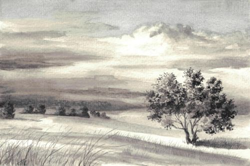 Weekly Drawing Week 1 - Gray Scale Landscape WS