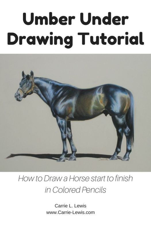 Umber Under Drawing Tutorial