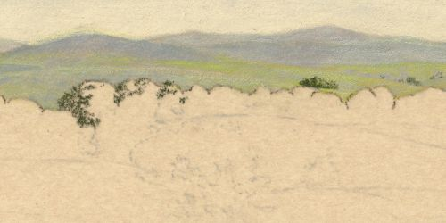 Fixing a Colored Pencil Mistake on Sanded Paper - Adding Trees