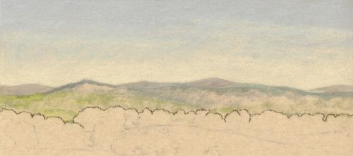 Fixing a Colored Pencil Mistake on Sanded Paper - Outlining Trees