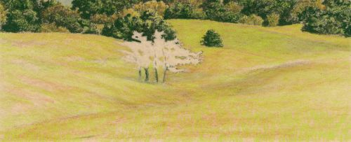 How to Draw Grassy Hills - Layer green over the base color.