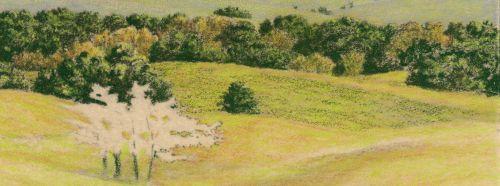 How to Draw Grassy Hills Darken the shadows8