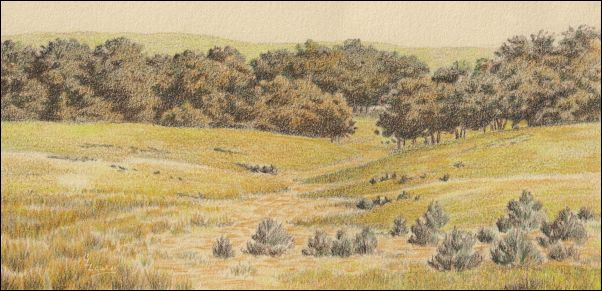 Umber Under Painting - Cloudy Landscape 15