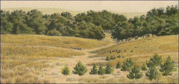 Umber Under Painting - Cloudy Landscape 22