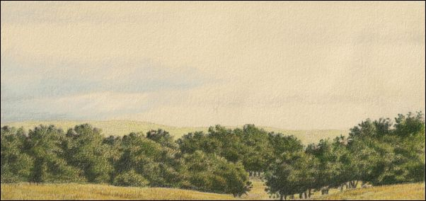 Umber Under Painting - Cloudy Landscape 24