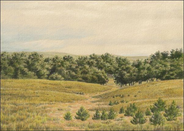 Umber Under Painting - Cloudy Landscape 32 Finished