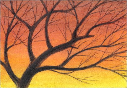 How to Draw a Sunset Sky with Watercolor Pencils Step 5
