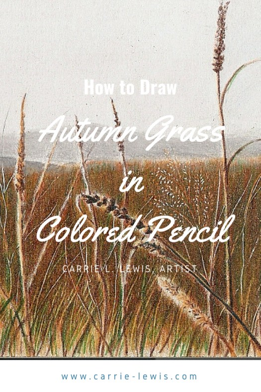 How to Draw Autumn Grass in Colored Pencil