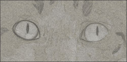 How to Draw Cat Eyes - Step 1