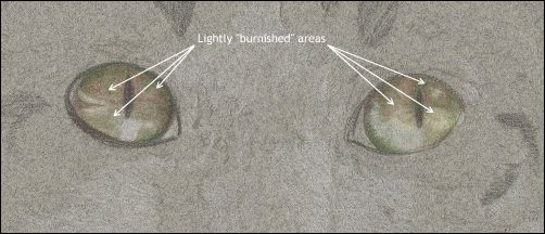 How to Draw Cat Eyes - Step 4d