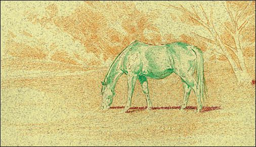 Draw a Horse Using the Complementary Under Drawing Method - Step 1
