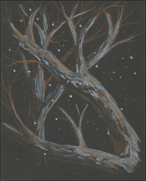 Metallic Colored Pencils on Black Paper 2