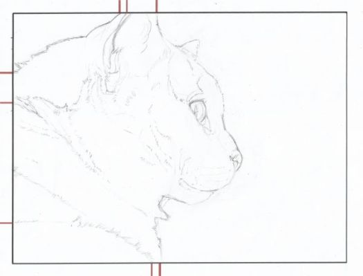 How to Draw Exactly What You See--The Finished Line Drawing