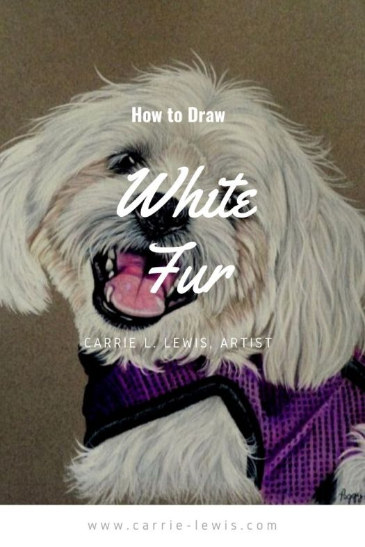 How to Draw White Fur