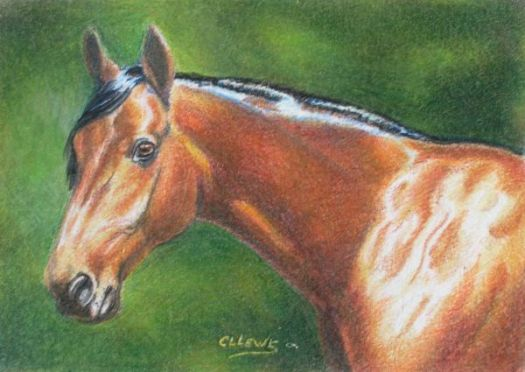Switching from Oil Painting to Colored Pencils - Work small to begin your transition.