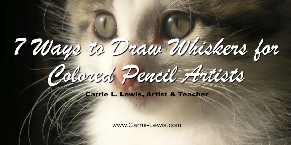 7 Ways to Draw Whiskers for Colored Pencil Artists