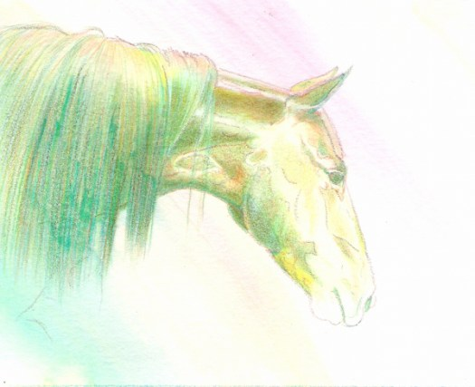 water soluble colored pencils