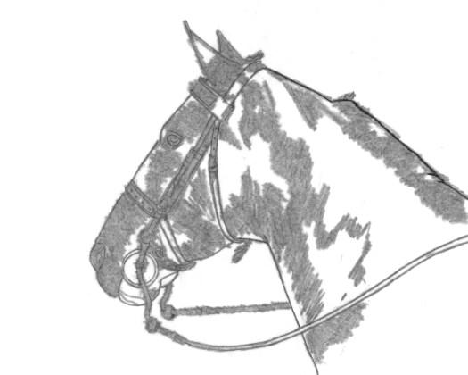 The Best Method of Transferring Drawings