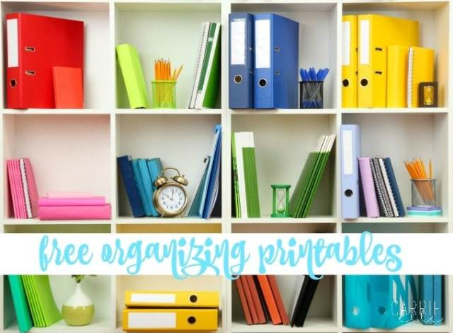 Organization Tips: Take Control of Monday! - Carrie Elle