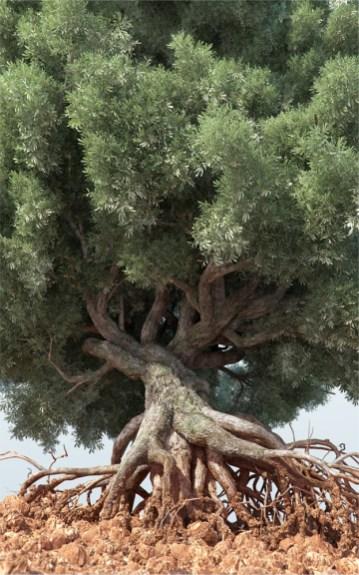 Maria Grazia Pontorno, Il Giardino degli Ulivi, 2014, stampa fine art da immagine 3D, cm 150 x 240,