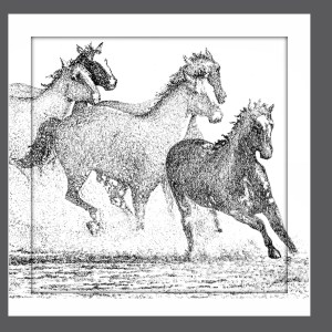 Ryder's horses gray background sq