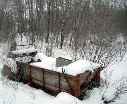 Antique in the snow - Carrie ©