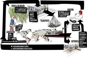 InfograficoCadeiaAzucar