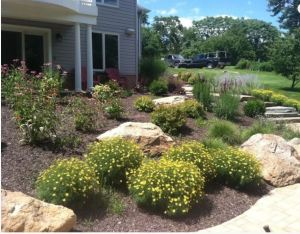 Landscaping Myths Carroll Landscaping