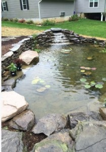 Water Features: A Look at How They'll Enhance Your Home