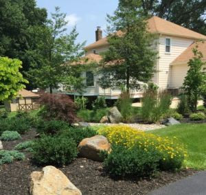 Avoidable Landscape Design Mistakes Carroll Landscaping