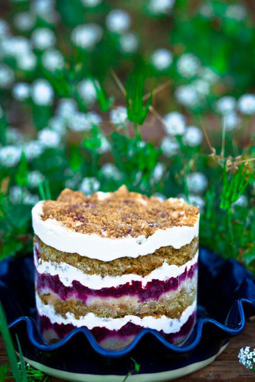 Vegan Raspberry Lemon Cake
