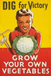 Dig For Victory Ð Grow You Own Vegetables
