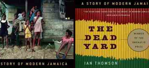 book cover for the dead yard