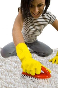 scrubbing-the-carpet