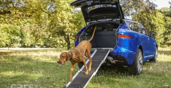 Jaguar has launched a new range of dog friendly accessories