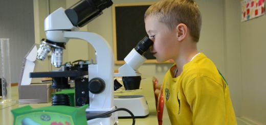 bambino_aula scienze