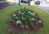 Jardinera de la mediana de la calle Alfonso XII